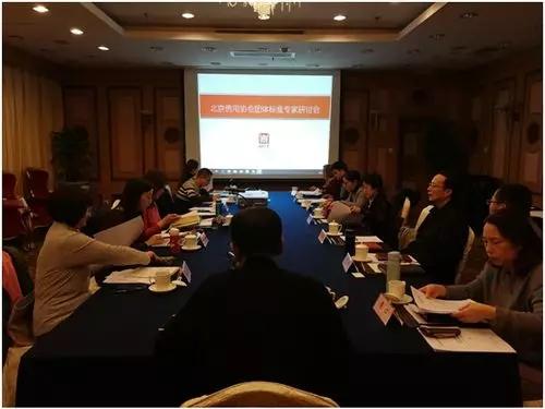 协会团体标准专家研讨会