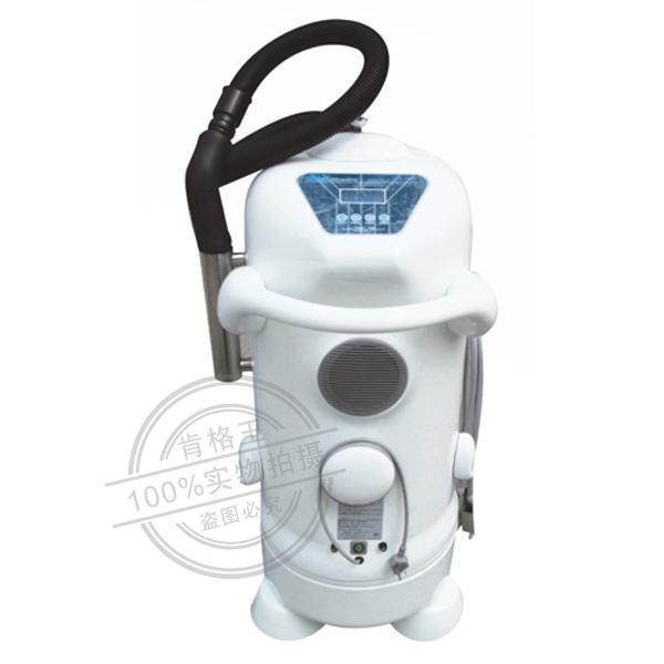 床单位臭氧消毒机(带压缩功能)