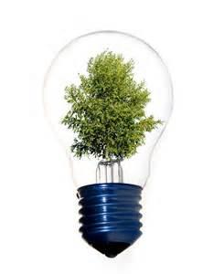 ◆中国将建立绿色木竹材料认证体系