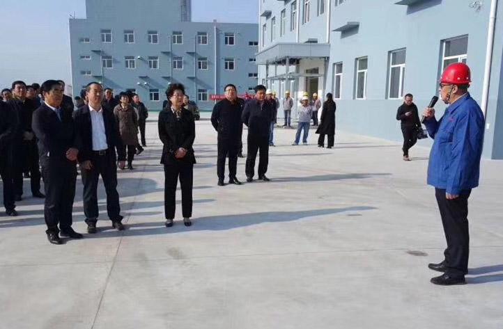 唐山市领导集体观摩乐亭区域能源中心