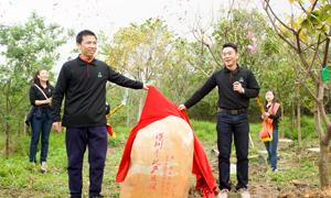 2016合力泰-深圳手机产业植树节(全程回顾)