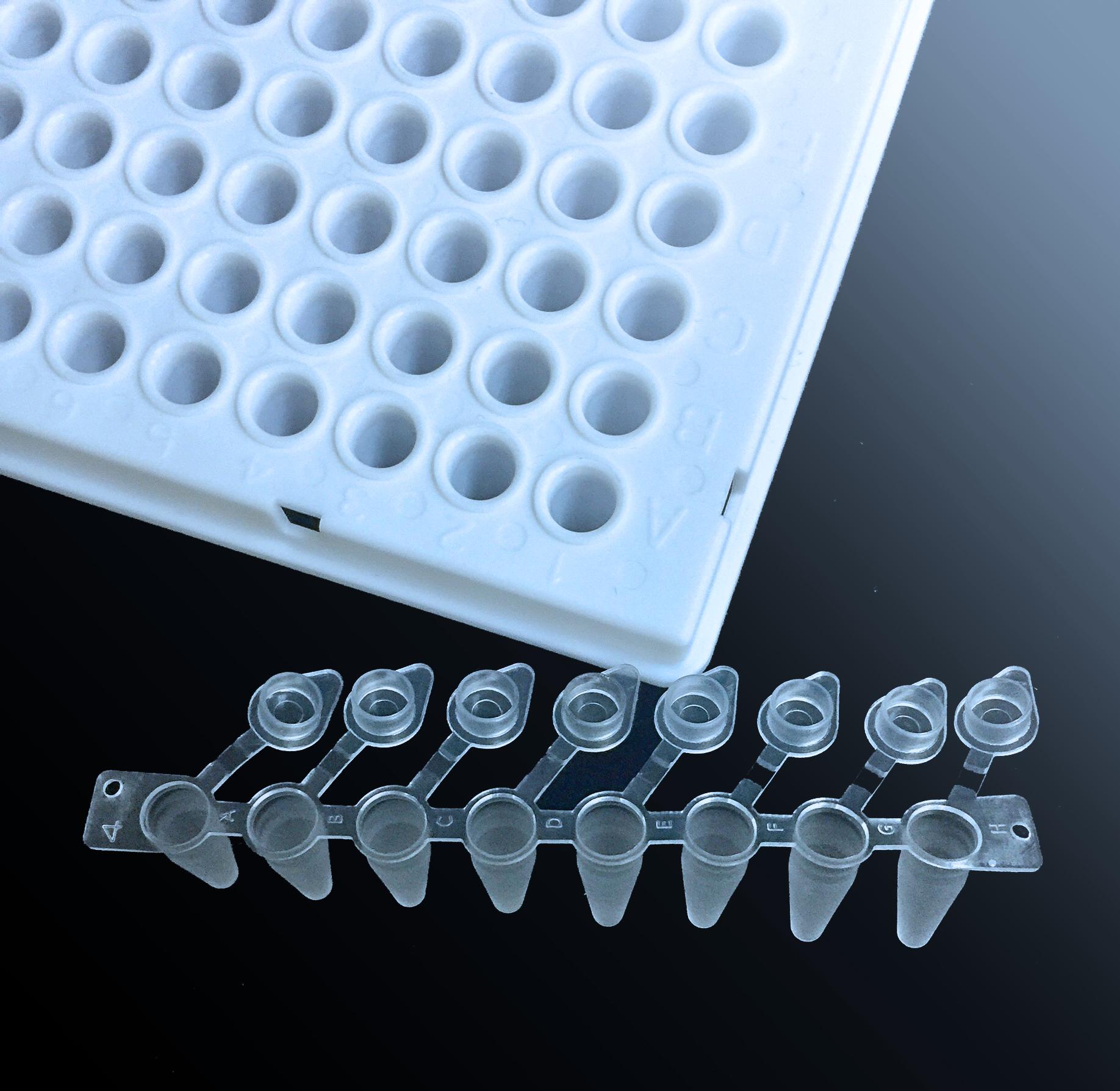 透明PCR八联管(含独立管盖)