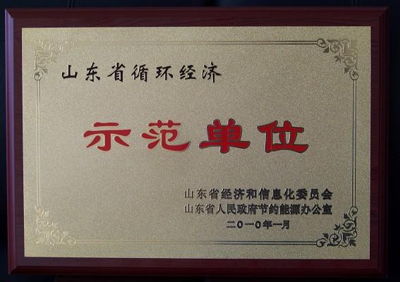 山东省循环经济示范单位
