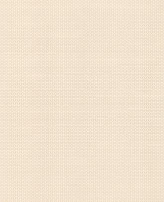 壁纸加盟条件:罗马宫殿1系列