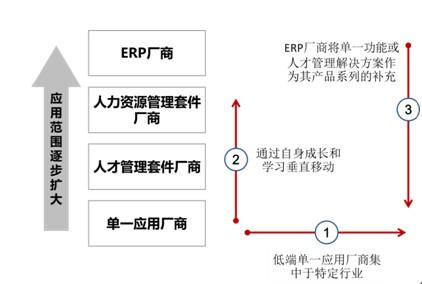 国内人才管理软件市场探析