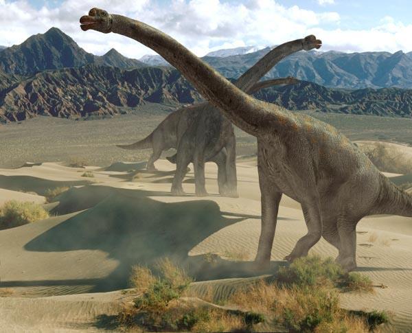 恐龙世界 (五) 恐龙的研究