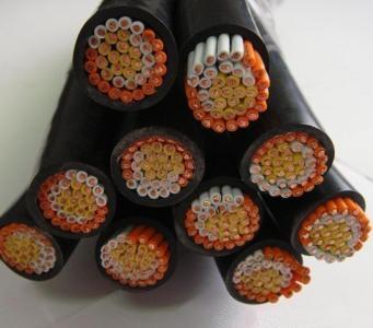 450/750V 聚氯乙烯绝缘聚氯乙烯护套控制电缆