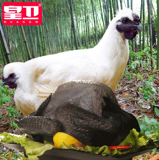 皖江云岭乌鸡