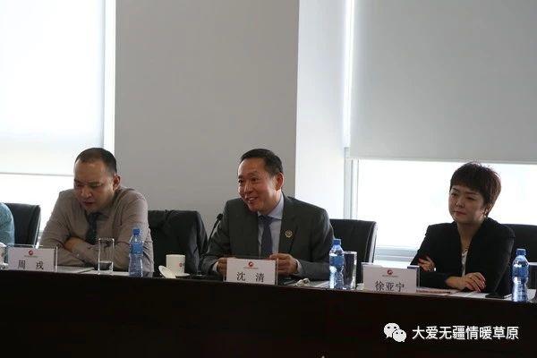 北京大鸾翔宇慈善基金会理事长沈清发言
