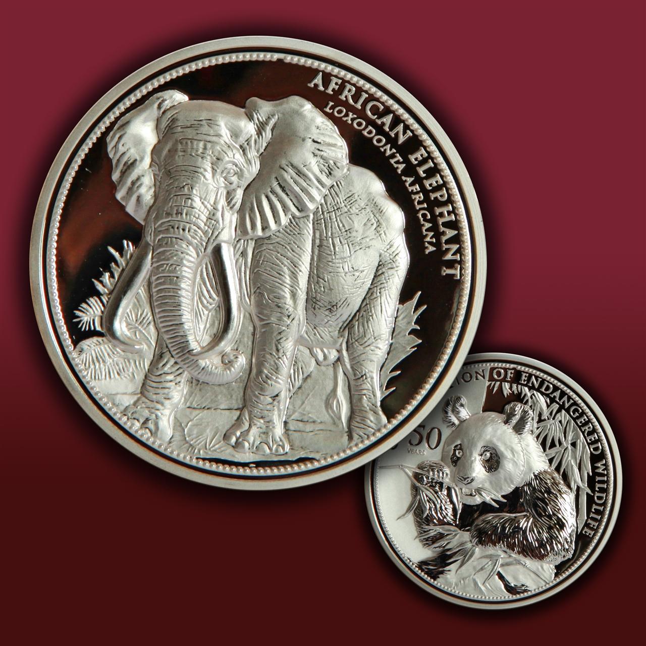 碗状币-非洲象