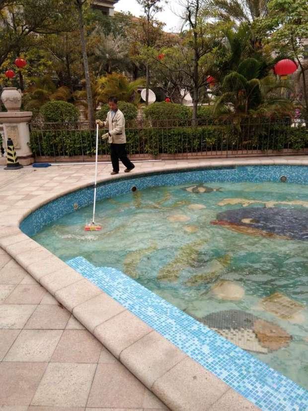 深圳宝亮杰清洁人员,水池清洗前