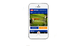 网站建设公司-米粮建设的手机/微信网站,电脑网站+手机网站+微信+APP一体化同步管理于一个后台,自适应所有尺寸手机屏幕,网页表现力强大,企业形象展现更精彩.
