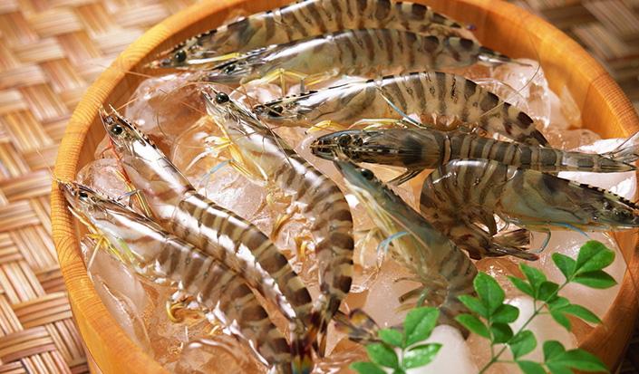 yabo亚博体育特种河虾