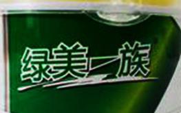 广州绿美一族