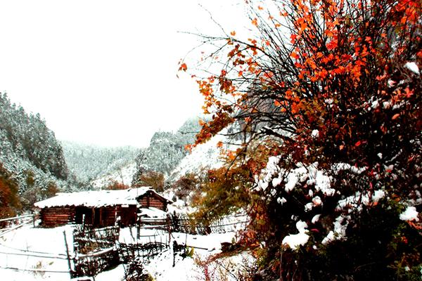 香格里拉 石卡雪山