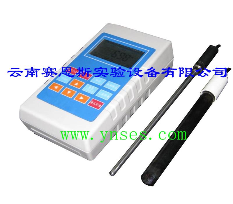 520型便携式酸度计