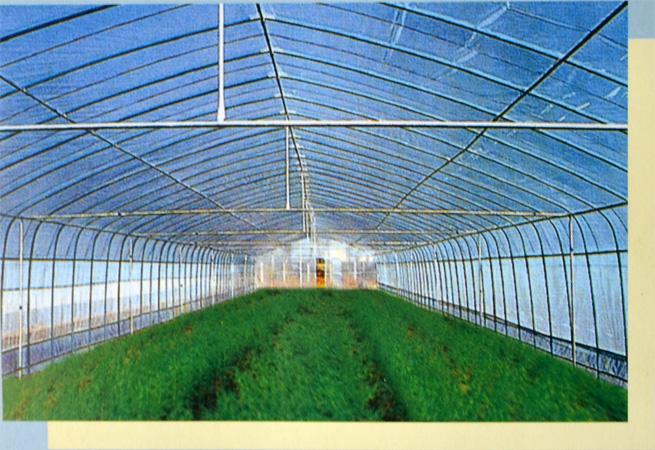 温室大棚案例4