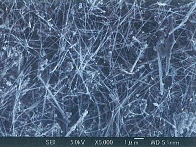 昭和电工 锂电池导电剂 纳米碳纤维VGCF