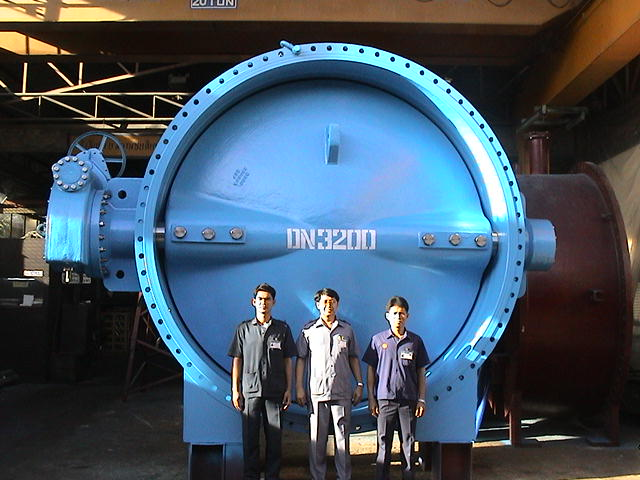 Picture of Butterfly Valve
