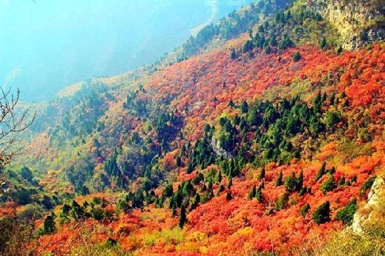 天然森林氧吧!河北这22处国家森林公园如仙境