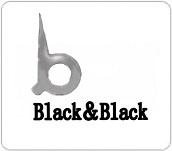 美国Black&Black Surgical 品牌简介