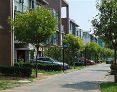 耿庄尚东庭48号楼109