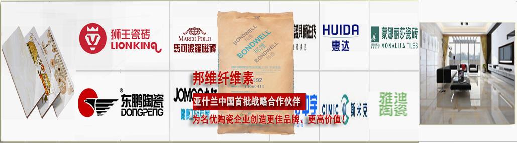 邦维纤维素_亚什兰公司江门纤维素厂家生产陶瓷纤维素-著名品牌纤维素