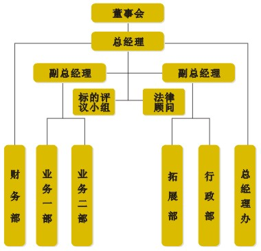 公司架构-金江和泰资产管理有限公司