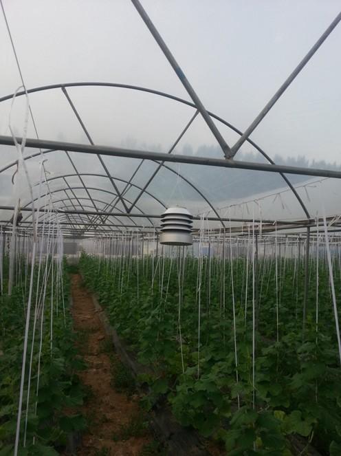 基于物联网的设施农业监控服务系统在南阳生态农业试验基地开始试验