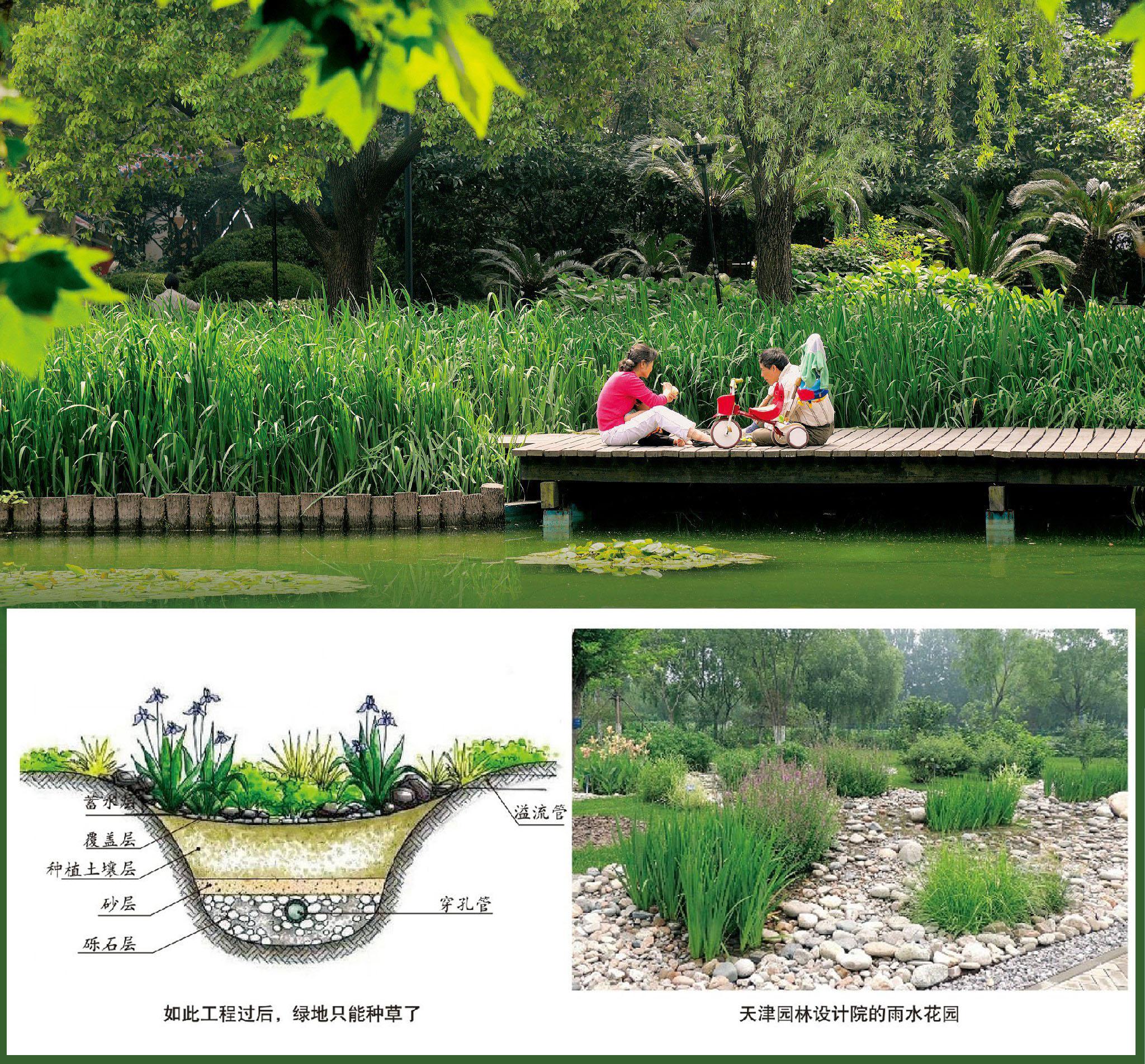 海绵城市与园林规划建设