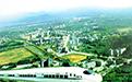 广东泰美,泰美,泰美镇,泰美象头山,泰美雷公峡,泰美特色农产品,泰美原生态旅游