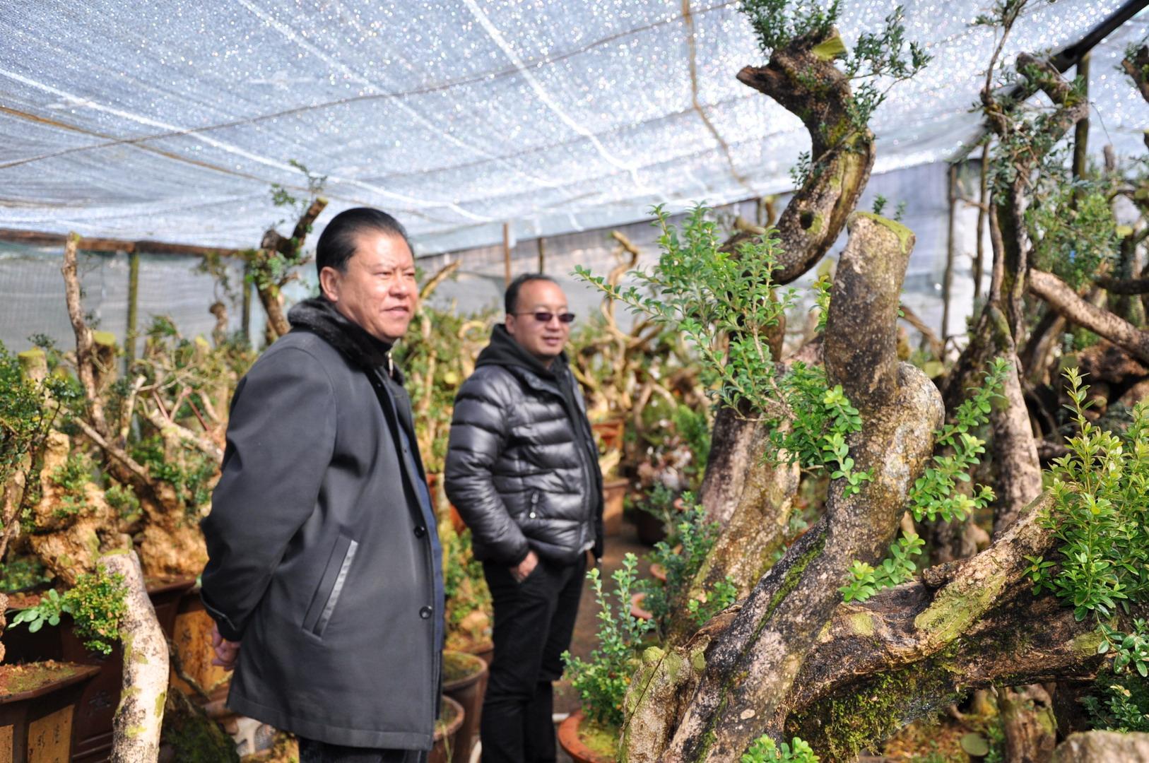 市花协会长和世华(左)及副会长和凤伟