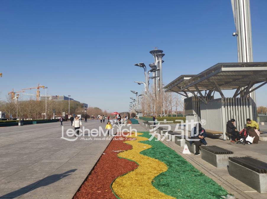 荔驰有机覆盖物点靓冬季奥林匹克公园千米景观大道