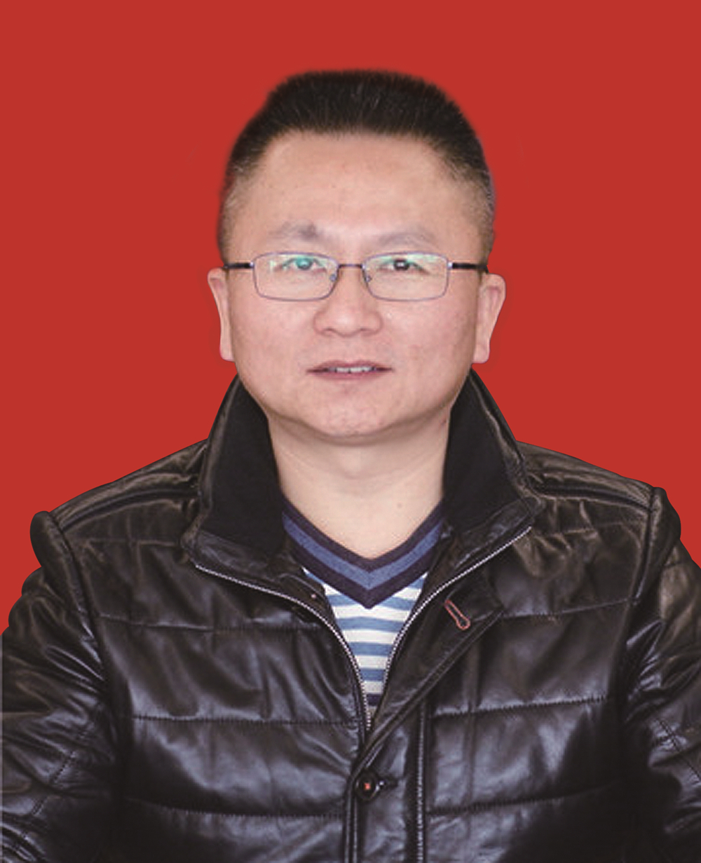 常务副会长-杨钢