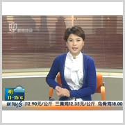 上海电视台新闻坊:开馆首展开幕式(2010-11)