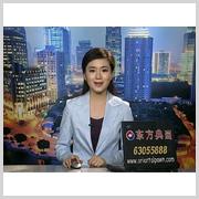上海电视台:俄罗斯油画艺术展(2009-06)