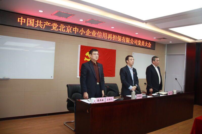 中共北京再担保公司党员大会胜利召开