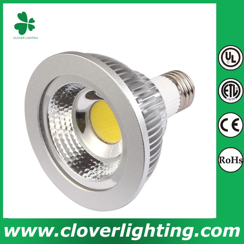 10W 38 Degree E27 PAR30 COB LED Spot Light