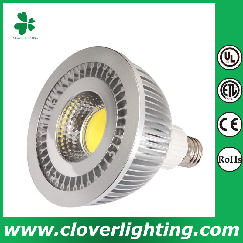 16W 80 Degree E27 PAR38 COB LED Spot Light