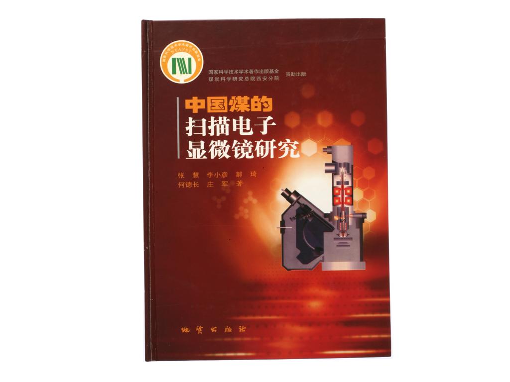 中国煤的扫描电子显微镜研究
