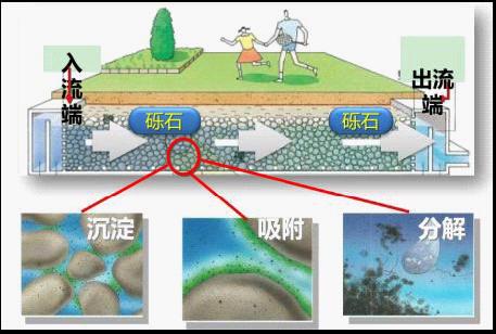 人工湿地污水处理系统