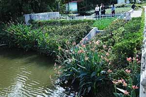 上海牌楼村污水处理项目