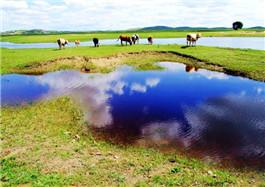 鸿雁湖旅游区
