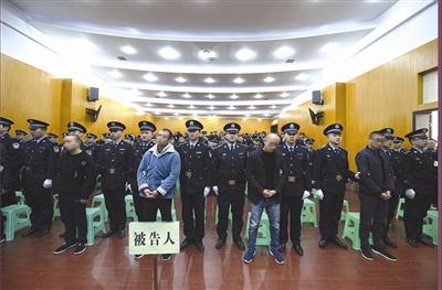 """四川阆中""""渔霸""""何硕等15人涉黑案一审宣判"""
