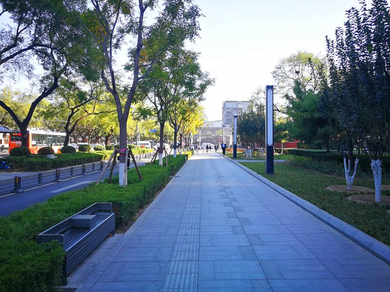 阜内大街市政道路空间改造项目