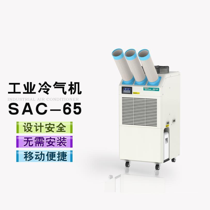 冬夏移动冷气机SAC-65