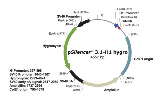 pSilencer 3.1-H1 hygro