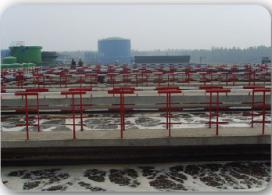河北梅花味精废水处理项目