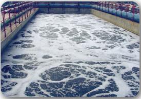 哈尔滨菊花味精废水处理项目
