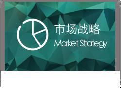 市场环境与竞争策略咨询